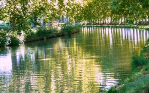 Chasseur immobilier Agde Canal du Midi